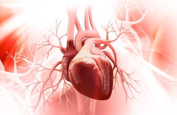 Heart Valve Awareness Day